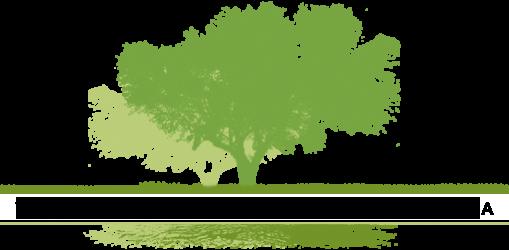 VIVE group ландшафтный дизайн