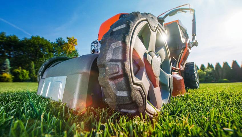 3 простых совета по приготовлению лужайки и сада к весне