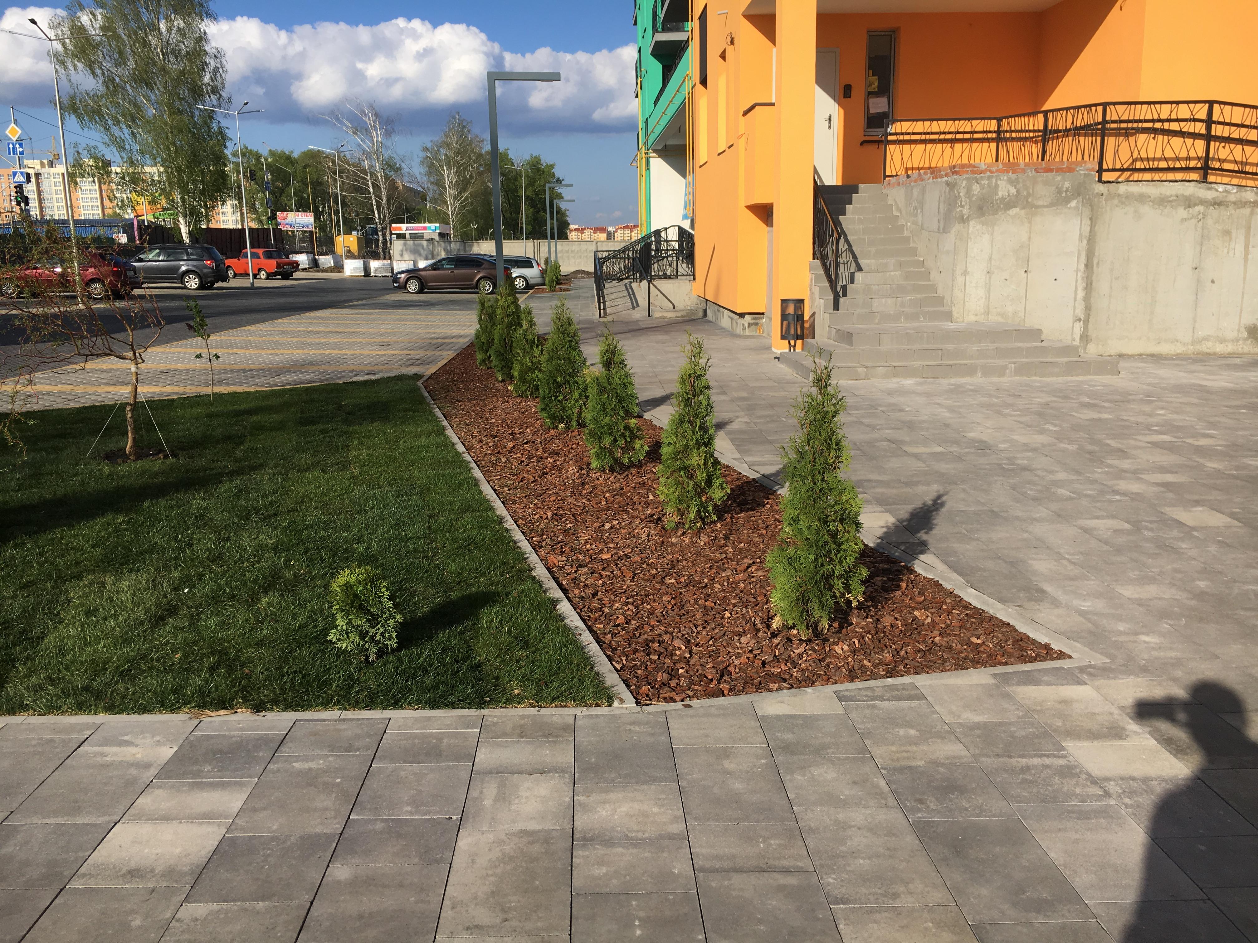 Озеленение жилых комплексов Киев