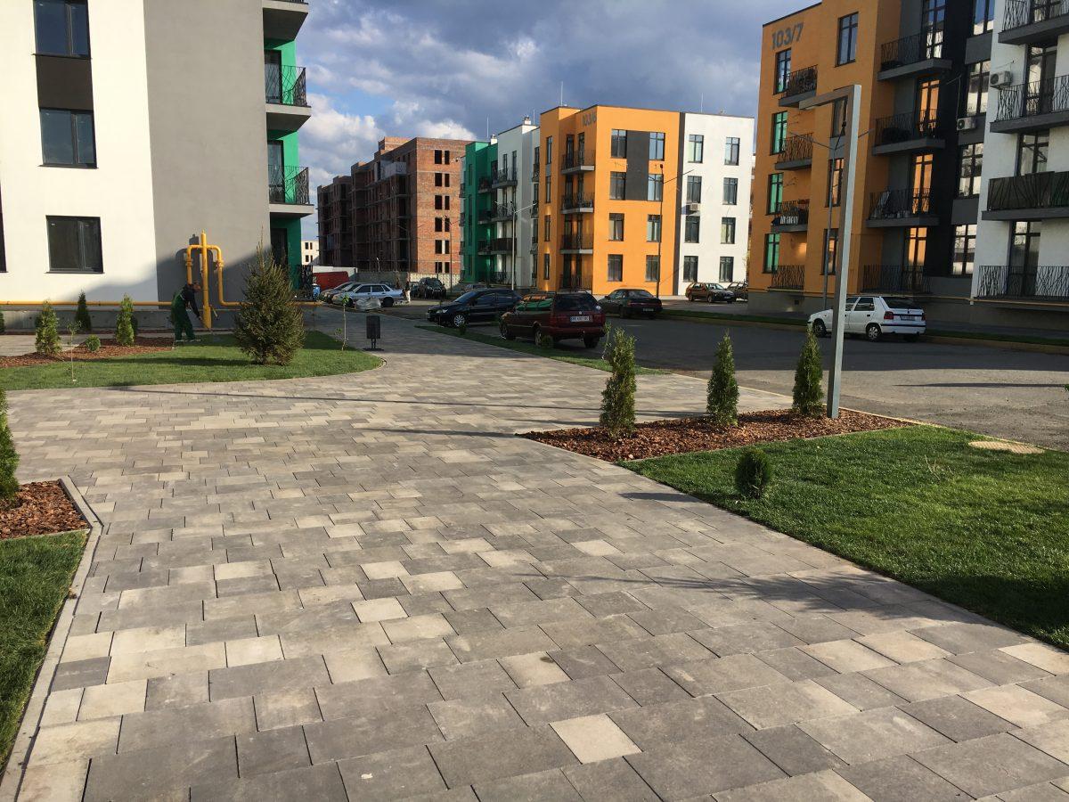 Озеленение жилых комплексов в Киеве