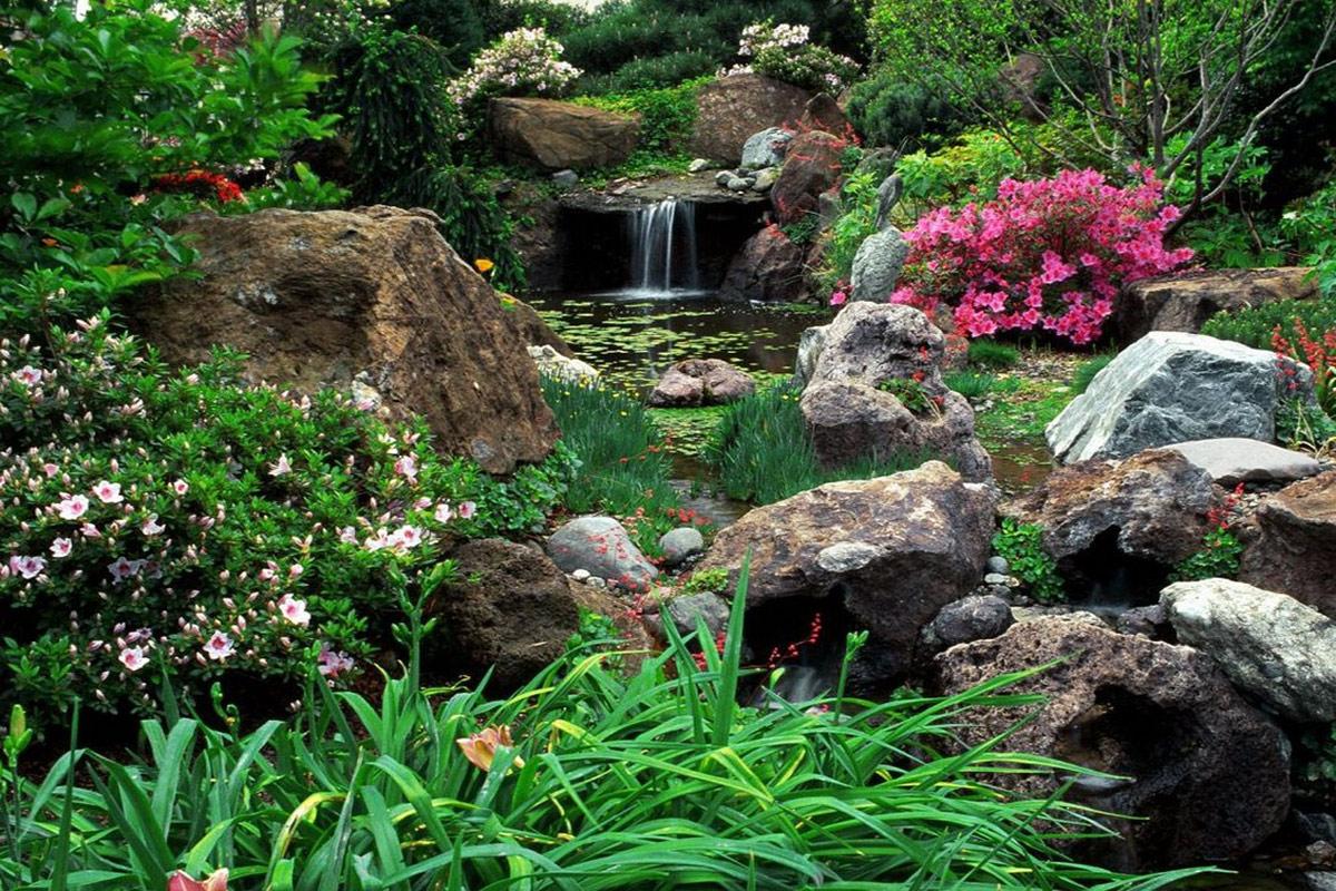 Оформление водоема диким камнем