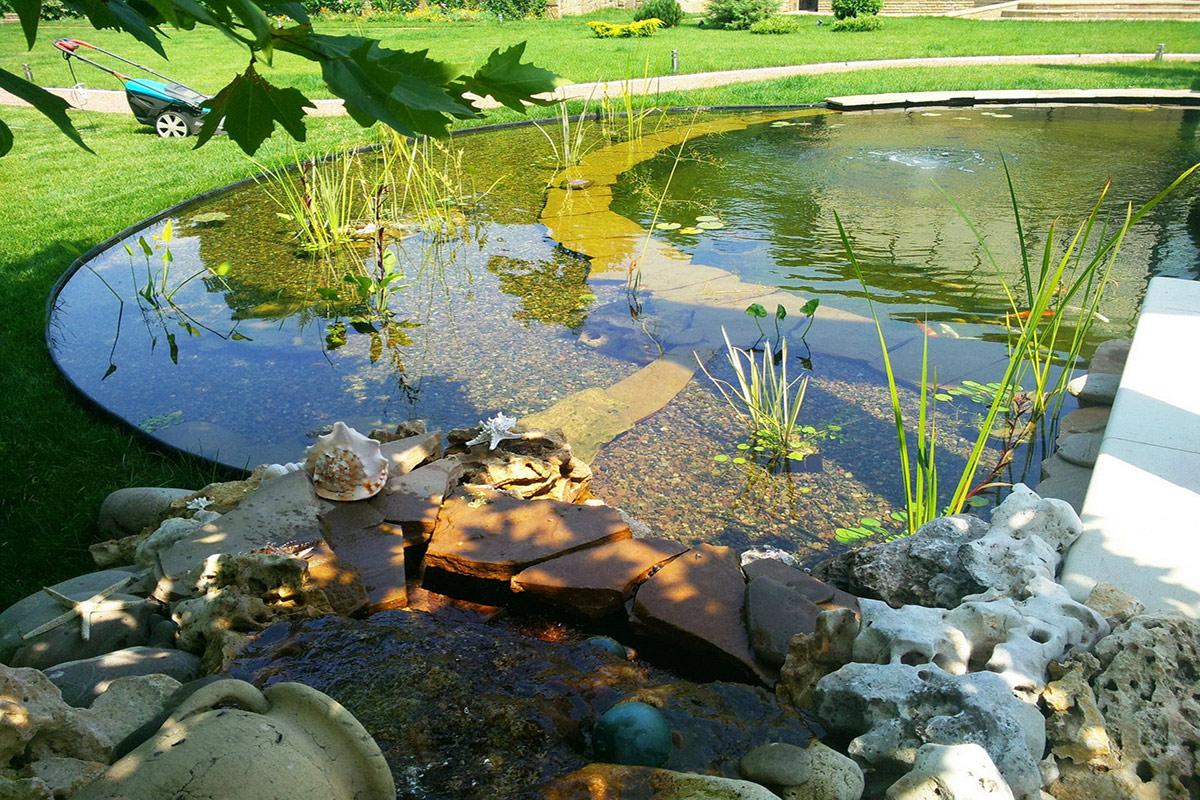 Оформление мелководного пруда