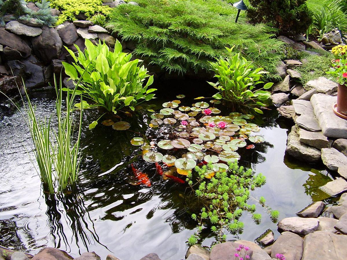 Камни для декорирования водоема