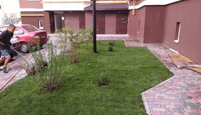 Укладка рулонного газона |Ландшафтный дизайн