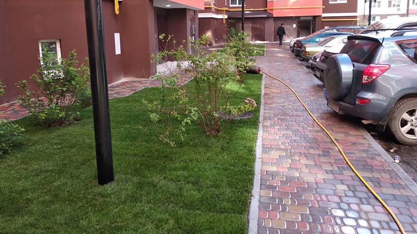 Укладка рулонных газонов для жилищных комплексов