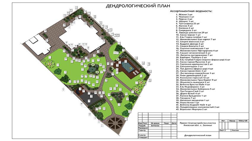 Дендрологический план участка 25 соток