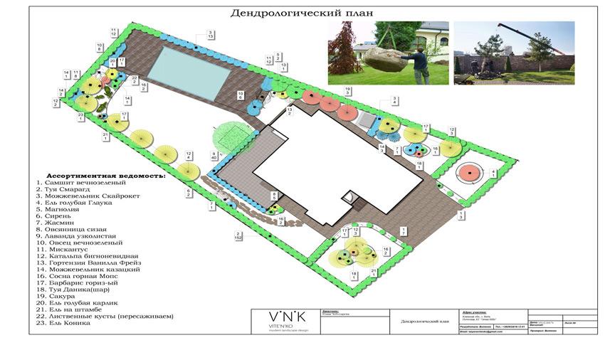 Дендрологический план участка 30 соток