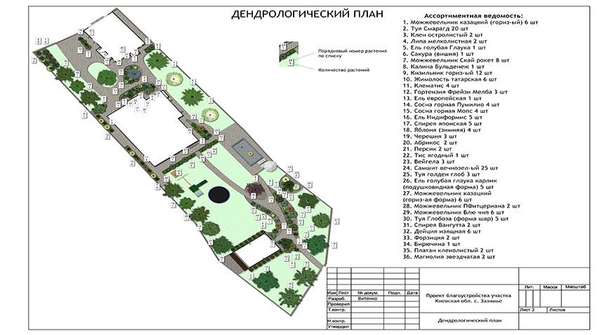 Дендрологический план участка 20 соток