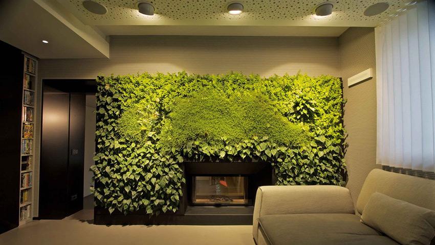 Внутреннее озеленение помещений. Фитостены