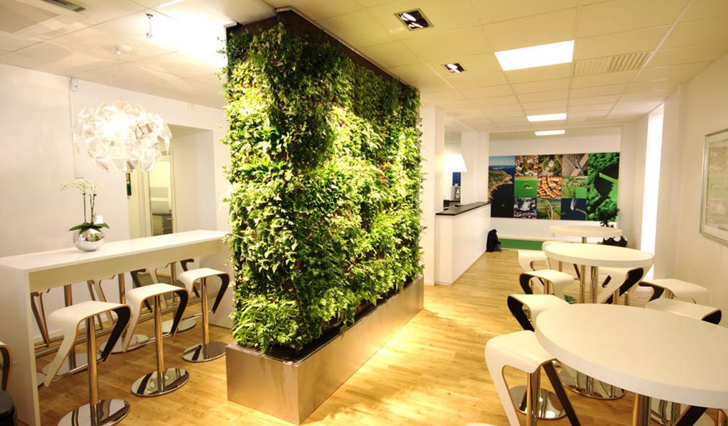 озеленение кафе