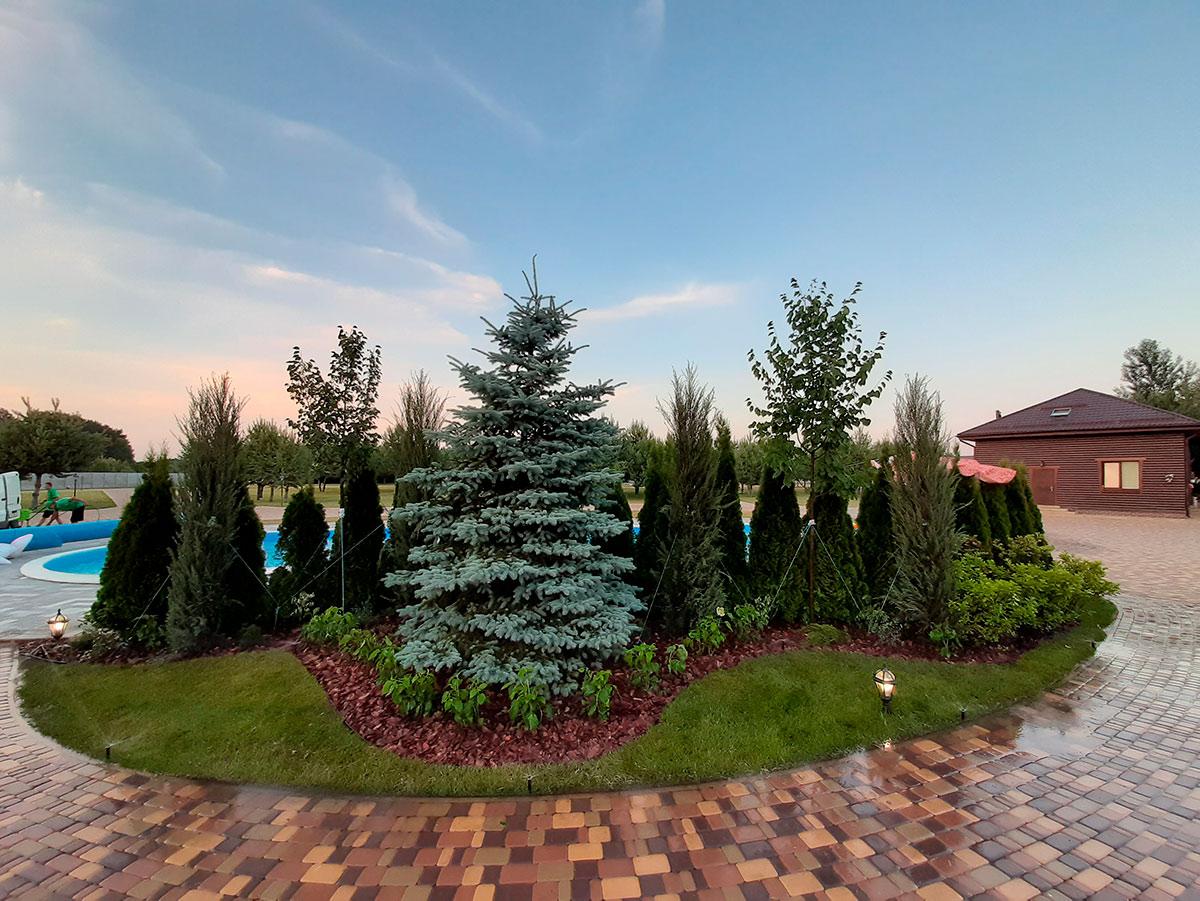 Озеленение территории Киев