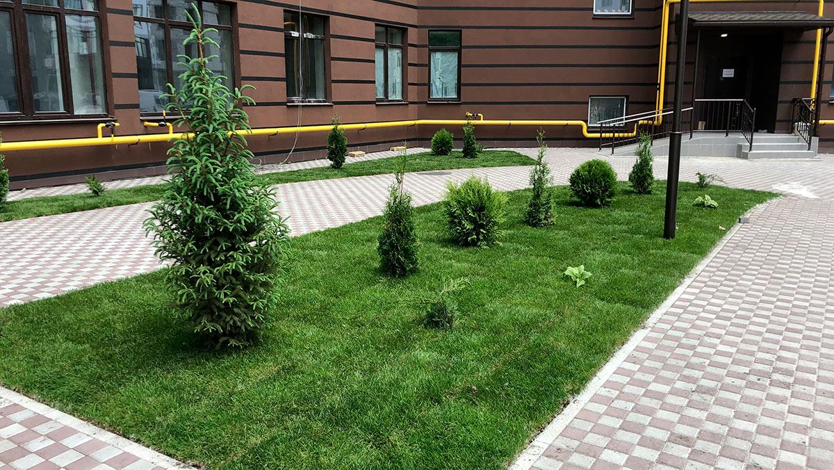 Озеленение коммерческой недвижимости