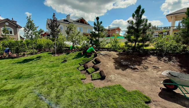 Укладка рулонного газона Киев