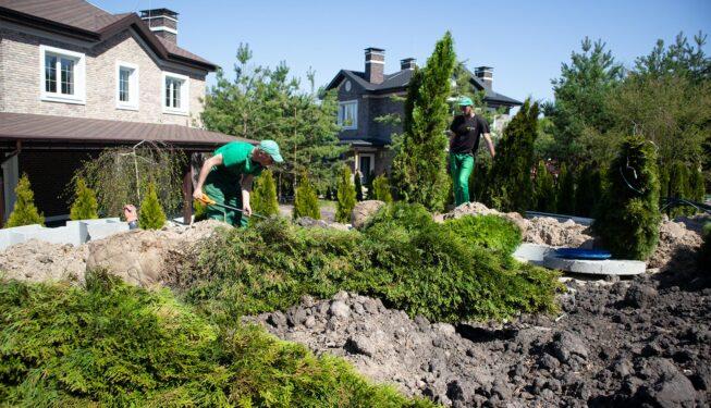 Озеленение. Весна 2021